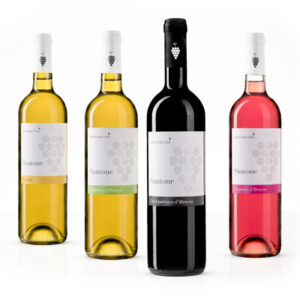 santone-vini-composizione-bottiglie