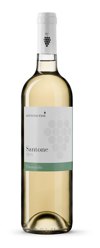 cococciola-abruzzo-santone-vini